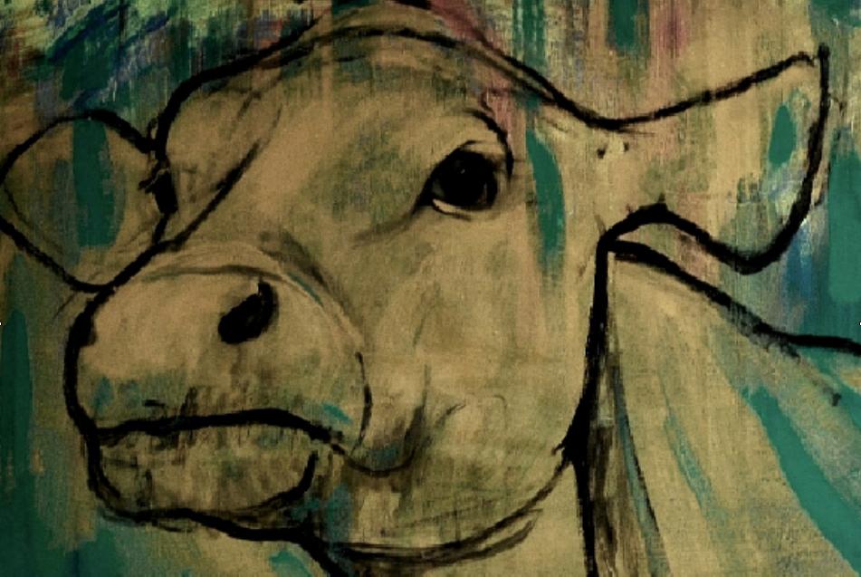 cow_farangis_yegane